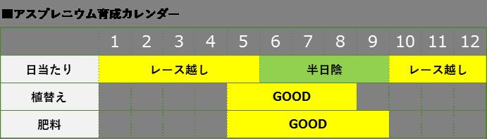 アスプレニウム育成カレンダー