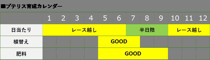 プテリス育成カレンダー